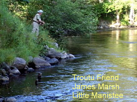 Fly Fishing The Little Manistee River | Trout Pro Store
