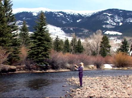 Fly fishing the blue river in colorado trout pro store for Fly fishing breckenridge