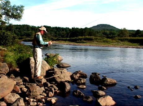 Deerfield river massachusetts trout pro store for Deerfield river fly fishing