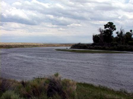 Fly Fishing The Green River Wyoming Trout Pro Store