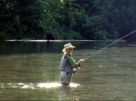 Fly fishing the north fork river trout pro store for Missouri trout fishing