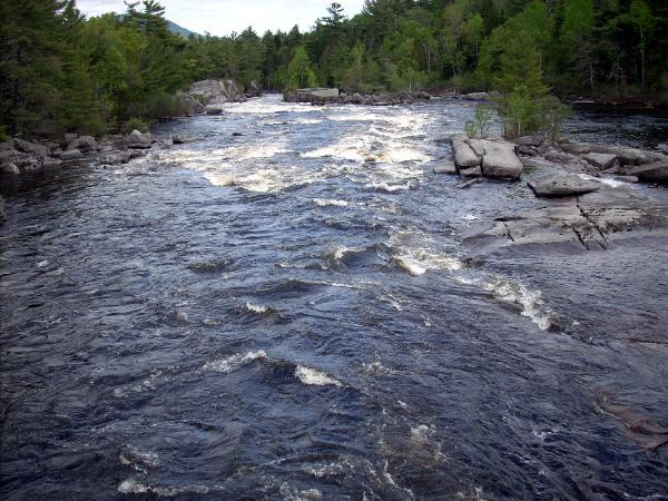 Fly fishing the penobscot river trout pro store for Maine trout fishing
