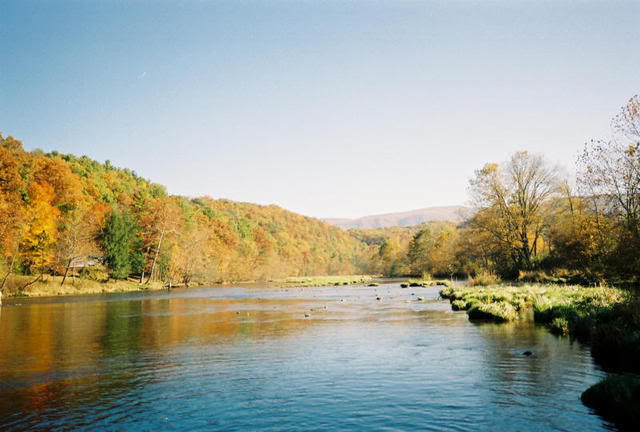 South Holston River Tennessee Trout Pro Store