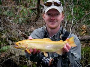 Palomino trout in cherokee tribal lands trout pro store for Cherokee trout fishing