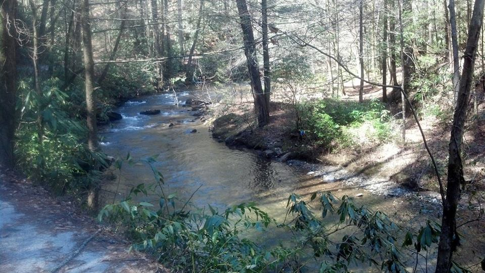 Upper chattahoochee river fly fishing trout pro store for Trout fishing in helen ga